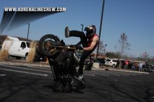 OCC-stunt-show-tutles